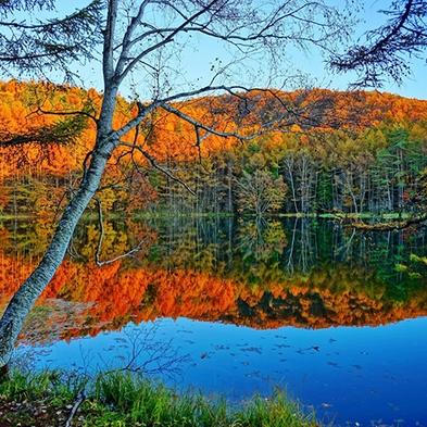 【直前割◆秋得】お日にち限定割引価格◆ワンちゃんと一緒にお出かけ!秋の信州車山高原へ
