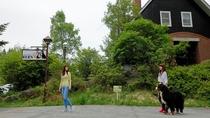 【周辺観光】ベルン周辺散策