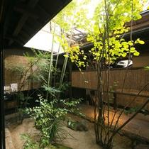 【ロビーから眺める中庭】夜になるとライトアップされ幻想的な雰囲気に