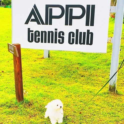 ・安比高原テニスクラブ