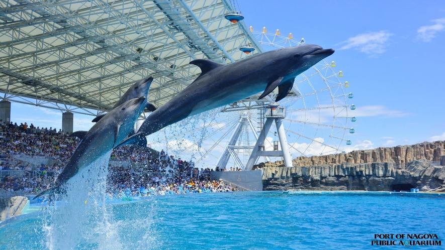 ■名古屋港水族館