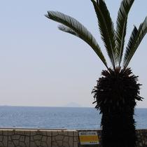 *【周辺観光】広~い海に癒される熱川の景色。