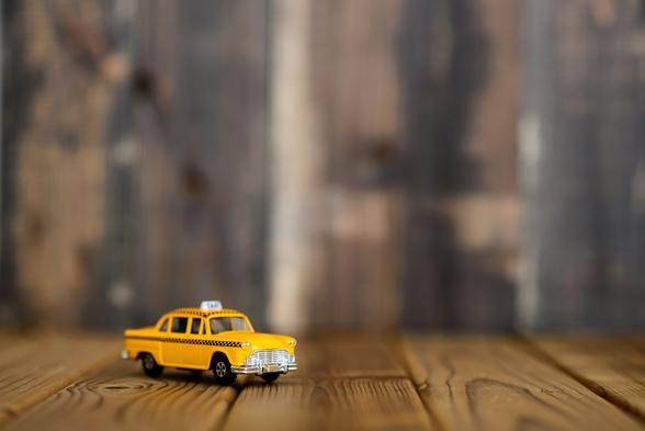 【車がなくともワンコと電車で来てね】タクシー代付きプラン