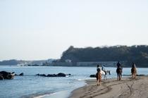 最寄の海岸