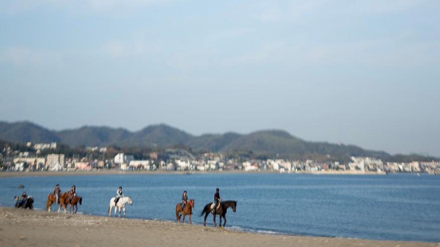 三浦海岸ビーチ