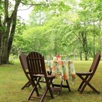グリーンシーズンの樅の木山荘