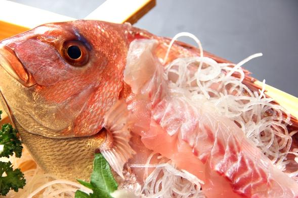 高級魚「ハタ」と鮮魚の姿盛り♪コラーゲンたっぷり贅沢海幸プラン【現金特価】