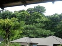 【吉野】 江戸時代に建てられた九覧亭の山がきれいに見える静かなお部屋です。