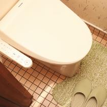 客室のトイレはウォシュレット付です♪