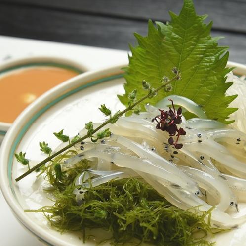 *しらうおのお刺身/霞ヶ浦名産の一つ。弾ける食感とクセの無い味が後を引く一品