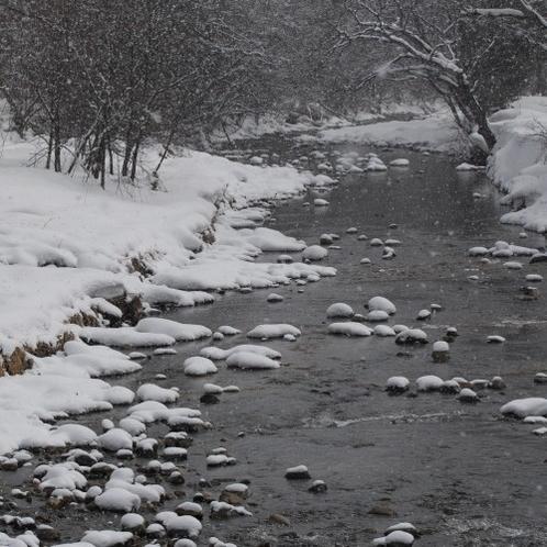 冬の豊沢川