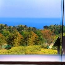 足湯カフェからの景観