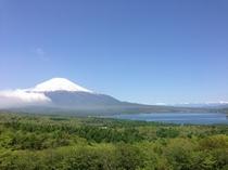 新緑のパノラマ台から見た富士山と山中湖