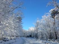 近隣 雪景色