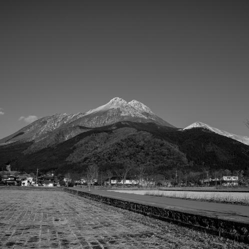 冬の由布岳 白黒