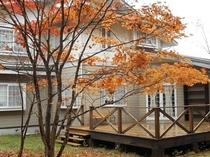 美しい紅葉を見られる秋のペンション