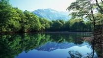 *【周辺観光】刈込池新緑