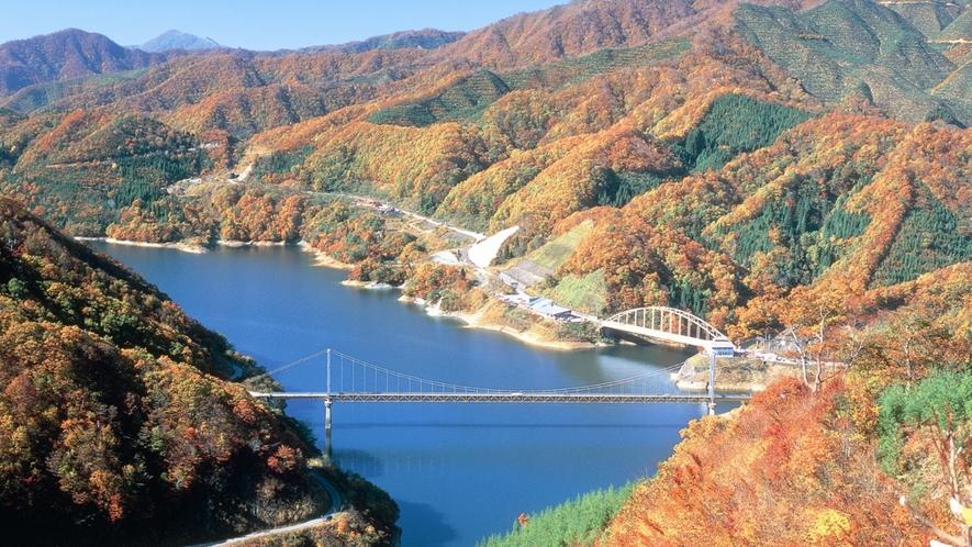 *【周辺観光】九頭竜湖紅葉