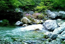 深山自然8