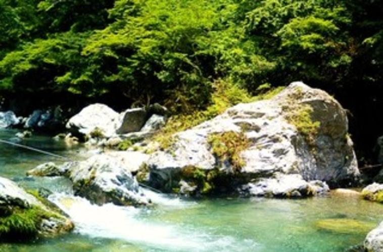 深山自然2
