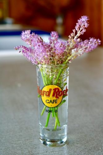 摘んできたお花を飾って・・。