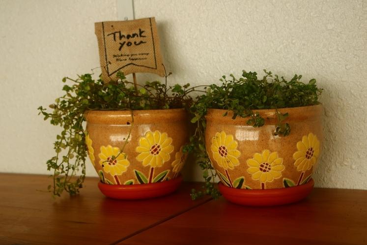 室内にお花。