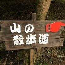 散歩道はきちんと整備されているので安心して山の中のお散歩にお出かけできます。