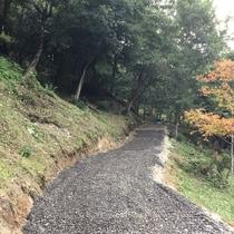 整備された散歩道。豊かな自然の中をのんびりとお散歩しながらお過ごしください。