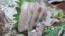 *【お食事一例/お造り】新鮮な魚介を使ったお料理