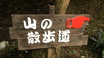 【散歩道】散歩道はきちんと整備されているので安心して山の中のお散歩にお出かけできます。