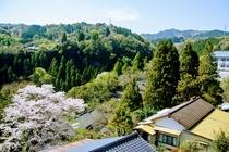 春の景観3