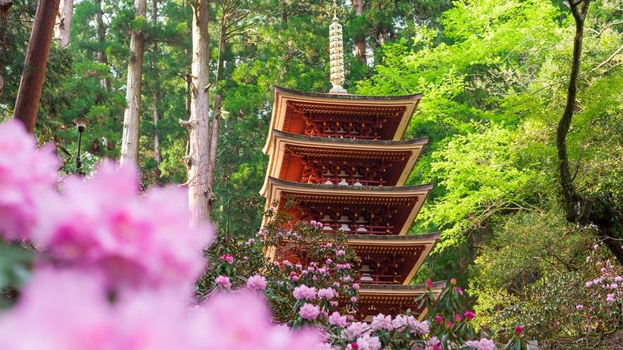室生寺と石楠花