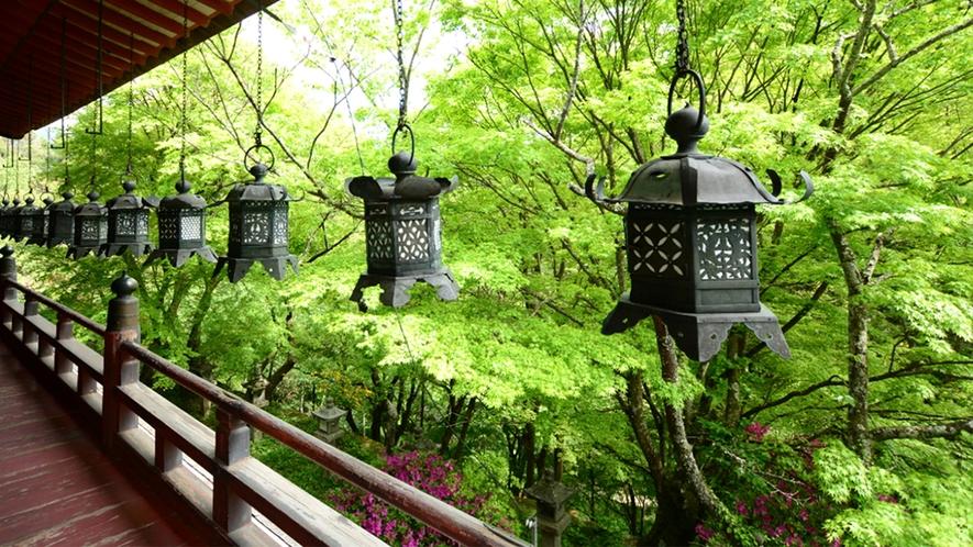 談山神社 新緑
