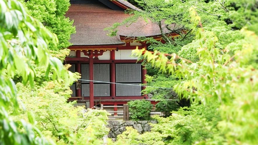 夏 談山神社 新緑の中の権殿 美しいのは秋だけではございません!