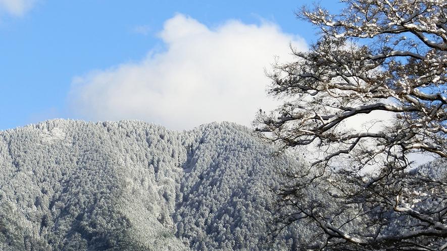 冬 銀の山並みを望む