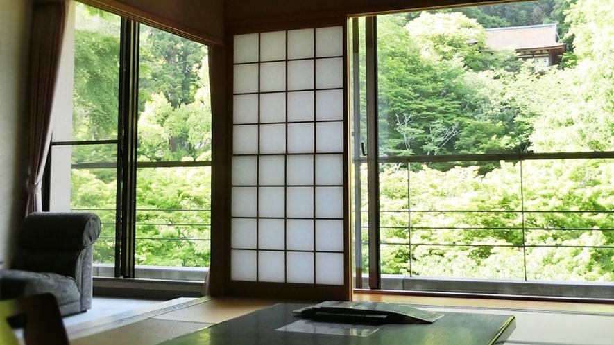 夏 東館客室より 新緑の本殿を望む