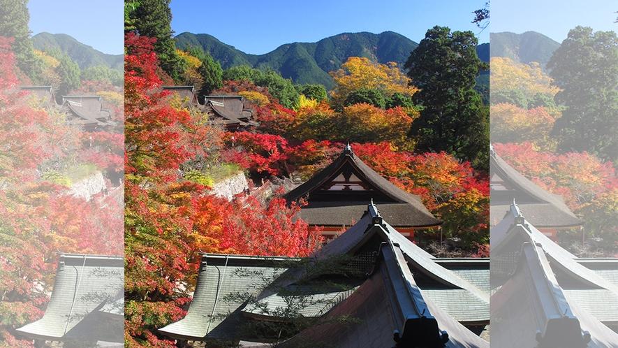 秋 談山神社 紅葉の社と山並み