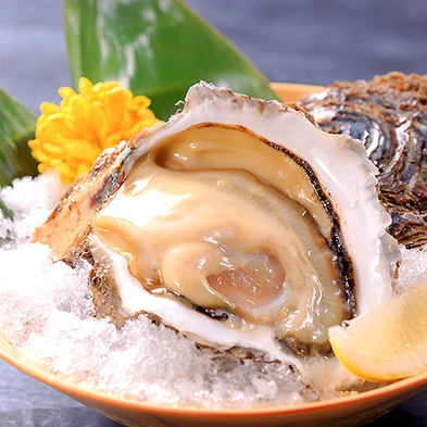 【料理グレードUP】初夏限定。今が旬の岩ガキを食す<岩ガキ・鮮魚刺盛り・鮑踊り焼き>