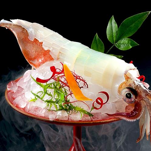 別注料理 イカ(アオリイカ・ヤリイカ)