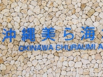 沖縄を代表する人気スポット「沖縄美ら海水族館」【車で約30分】