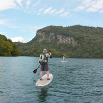 *【アクティビティ/カヤック】水の鼓動を感じながら普段見られない景色をお楽しみください。