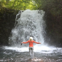 *【アクティビティ/トレッキング】川を渡り滝壺で泳いだりと自然に触れながらの時間をお楽しみ下さい。