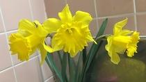 *洗面所には季節のお花を
