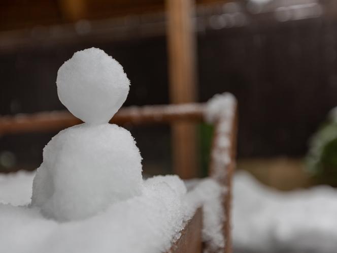 和室1~5名様 外で雪だるまを作ろう!