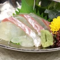 鯛のお刺身 イメージ