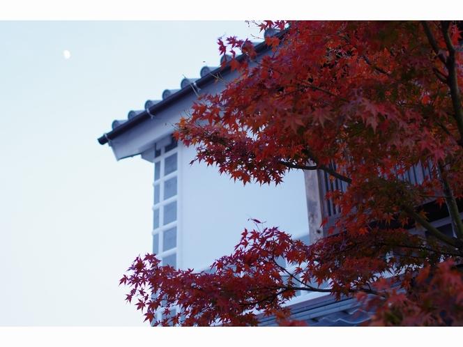 紅葉と白壁