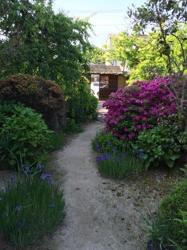 旅籠 備中屋長衛門 お庭には季節の花々が