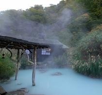 鶴の湯混浴露天風呂
