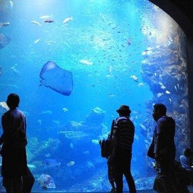 京都水族館チケット付きプラン【素泊り】