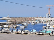 【太田名部漁港】大上食堂と魚定の2つの食堂があります。磯ラーメンが人気です。